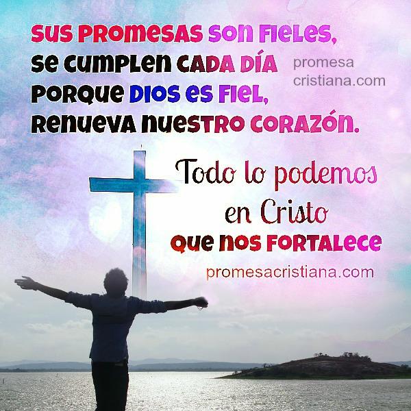 Creo en las promesas de Dios, gracias a Dios por su promesa. Imagen cristiana con promesas versículos bíblicos