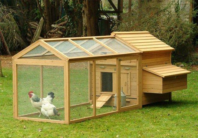 Kandang Ayam Sistem Ren Rumah