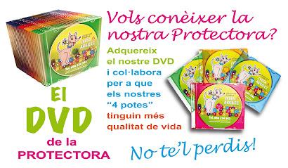 EL DVD de la PROTECTORA por tan sólo 3 euros