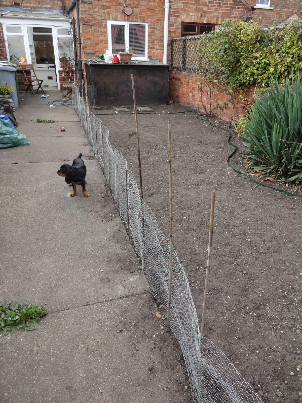 Temporary Dog Run : Kezzabeth uk home renovation interiors and diy