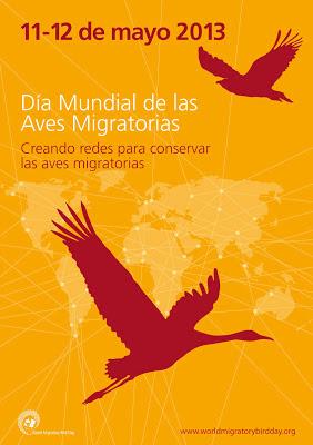 El fin de semana del 11 y 12 de mayo se celebra el día mundial de las aves migratorias.