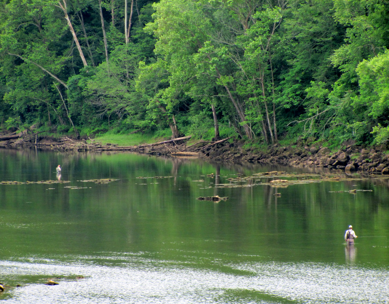 Lyrics of love and lore may 2012 for Clinch river fishing