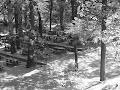 Platania picnic place - born to be wild!!!