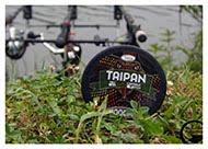 York Taipan - plecionka dla karpiarzy