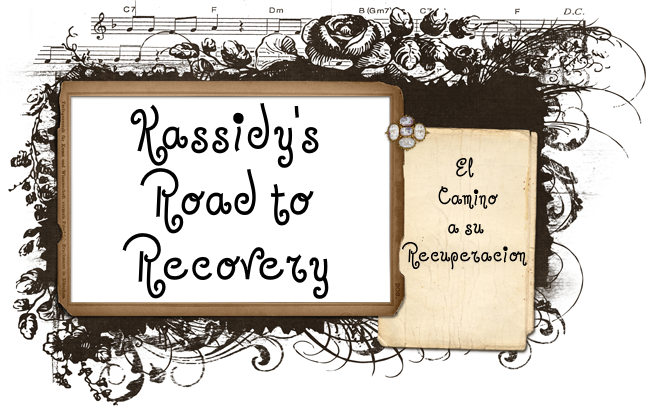 Kassidys Road to Recovery