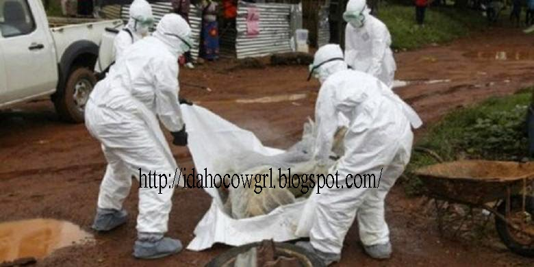 ebola virus attack