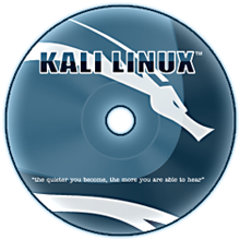 kali-linux-v20-all-edition-iso-direct.