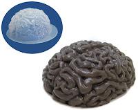 Brain Ice Mold2