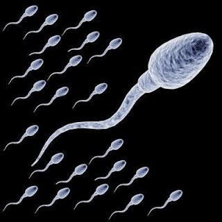 cara atasi sperma encer