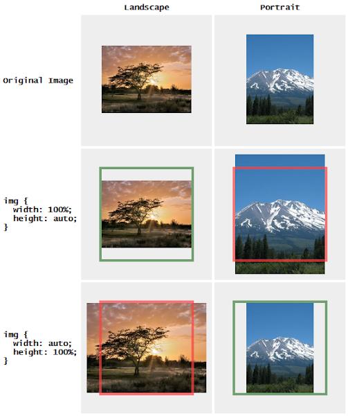 Proportionally Resized Images