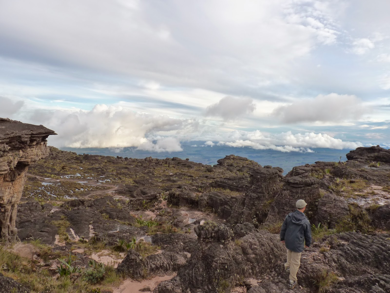 No cume do Monte Roraima Venezuela