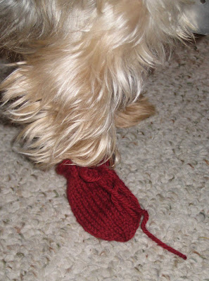 DOG BOOTIES KNIT PATTERN Free Knitting and Crochet Patterns