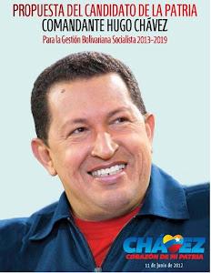 DESCARGA LA PROPUESTA DE GOBIERNO DE HUGO CHAVEZ 2013-2019