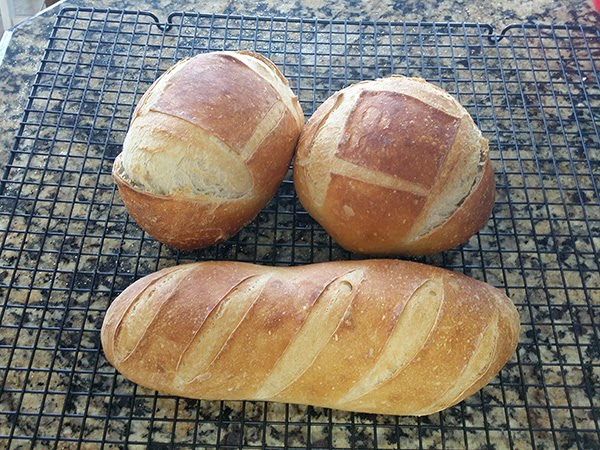 Sourdough or French Bread Lame Blade Scored Baked Bread