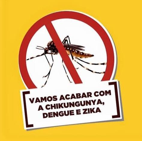 Combata o Aedes