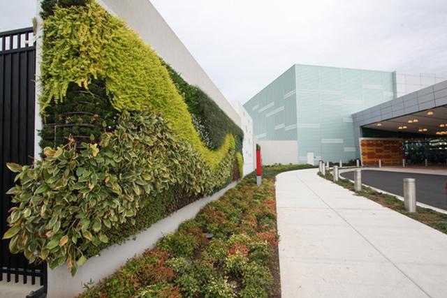 ideias de jardins lindos: para a divulgação de empresas em fachadas de prédios e muros