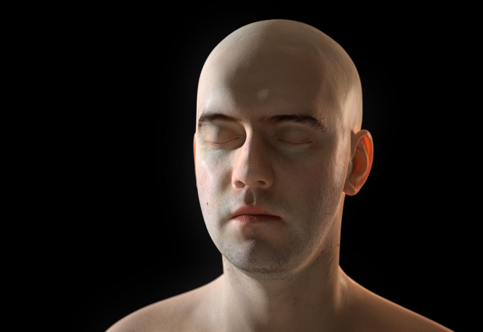continuum: Human head