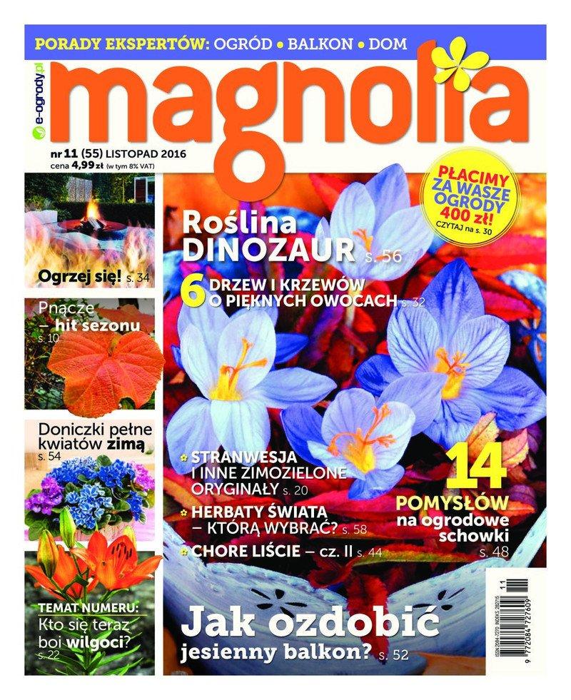 Magnolia Nr11 (55) LISTOPAD