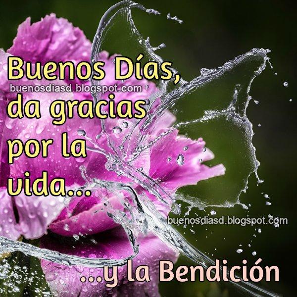 Mensaje positivo y cristiano de buen día, buenos días para ti y para mí, bendiciones en este día, frases bonitas para inicio de la mañana.