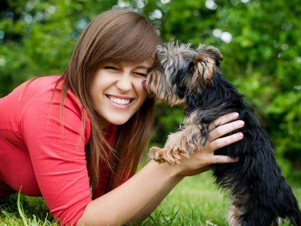 Important Laws On Pets In Most States Which You Should Be Informed About