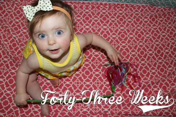http://meetthegs.blogspot.com/2014/05/lilly-anne-43-weeks.html
