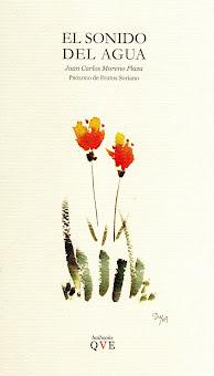 Mi libro de Haiku