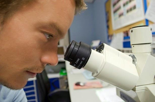 Scientific Fiber Weight Loss Study