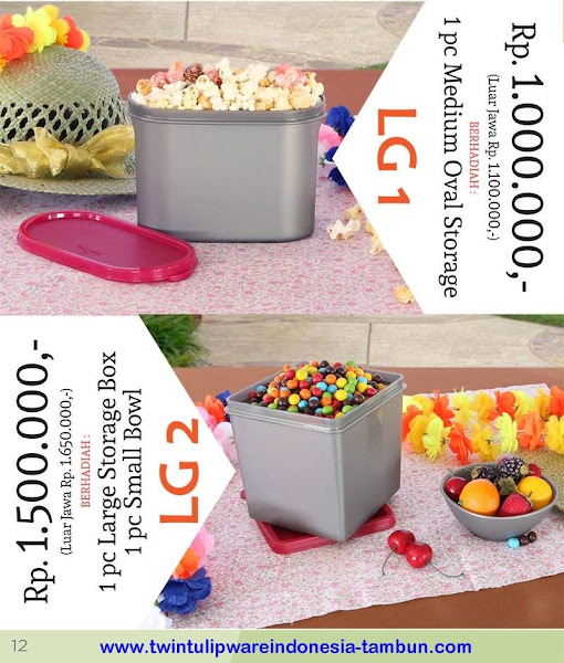 Level Gift 1 & 2 Twin Tulipware Nopember - Desember 2015
