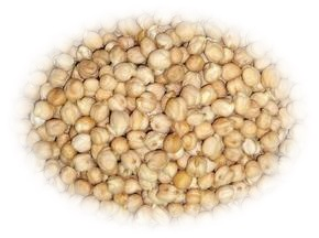 Ciecierzyca (Cieciorka) -Źródło białka