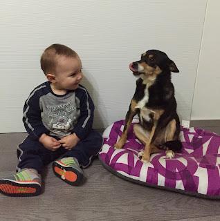 Zelda, la cagnolina mascotte di Sad Dog seduta a terra con un bambino