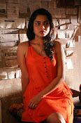 sheena shahabadi glamorous photos-thumbnail-3