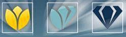 Pentru detalii si inscrieri la Blue Diamond clik pe imagine
