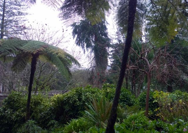 jardín Quinta da Regaleira