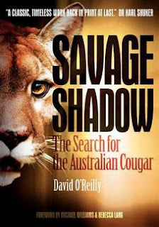BIG CAT seen crossing the Sturt Highway - 3 cars stopped for it! Savage+shadow