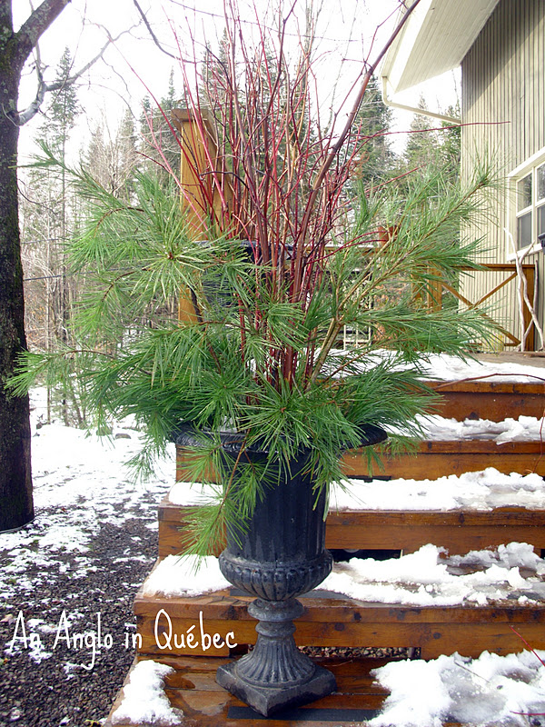 Outdoor Christmas Urns http://anangloinquebec.blogspot.com/2011/11/outdoor-decorating-begins.html