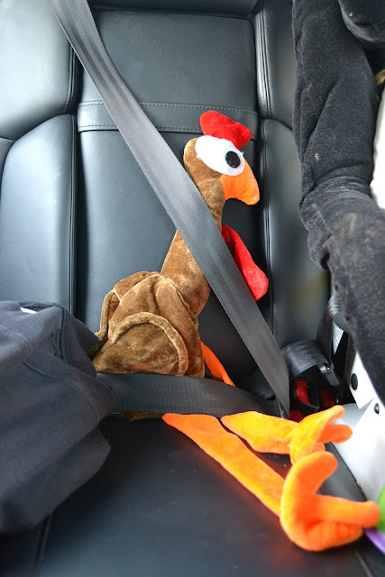 buckled up turkey for thanksgiving