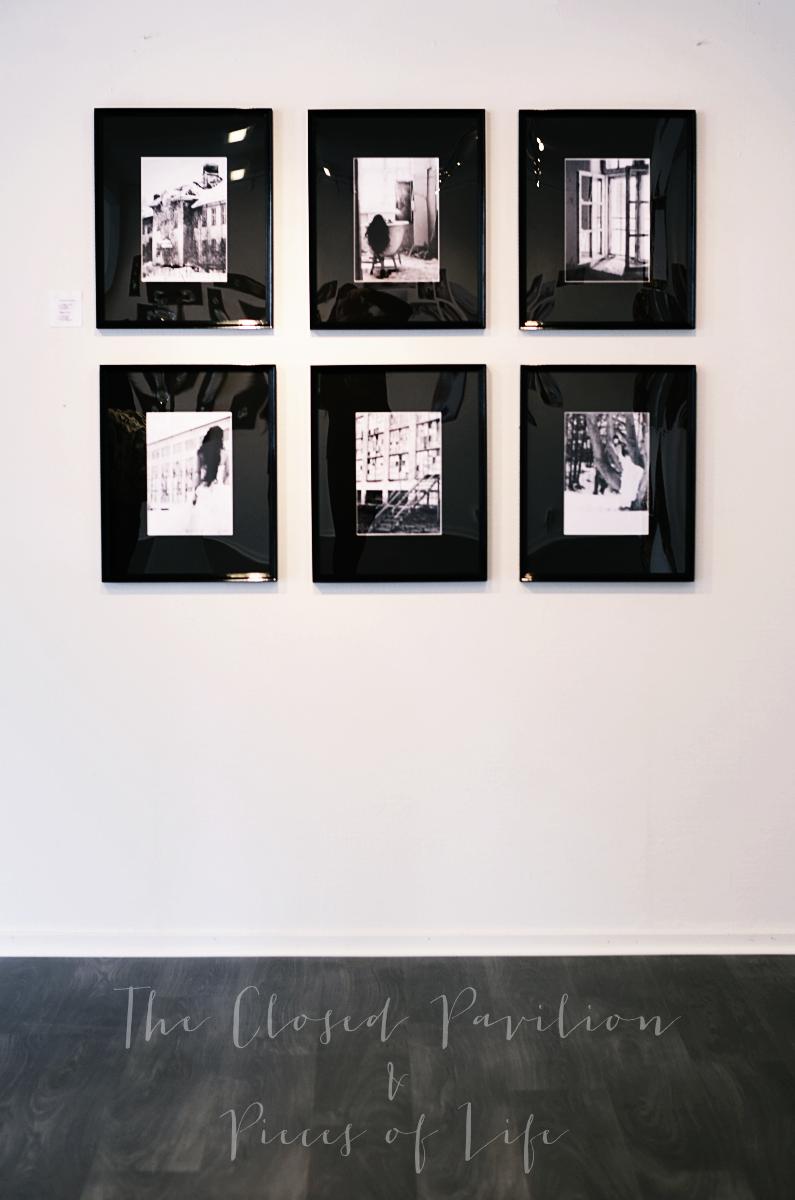 fotokonst, photo art, Louise von livsglitter, galleri sandström, fasta paviljongen, säter, mentalsjukhus