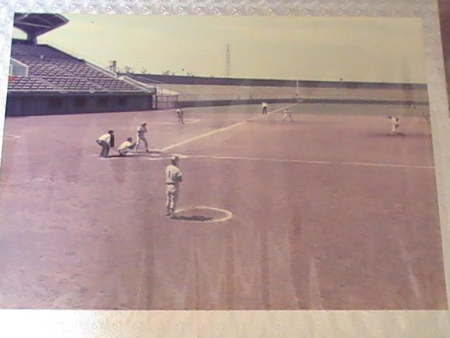 野球部 | 桜美林のスポーツ