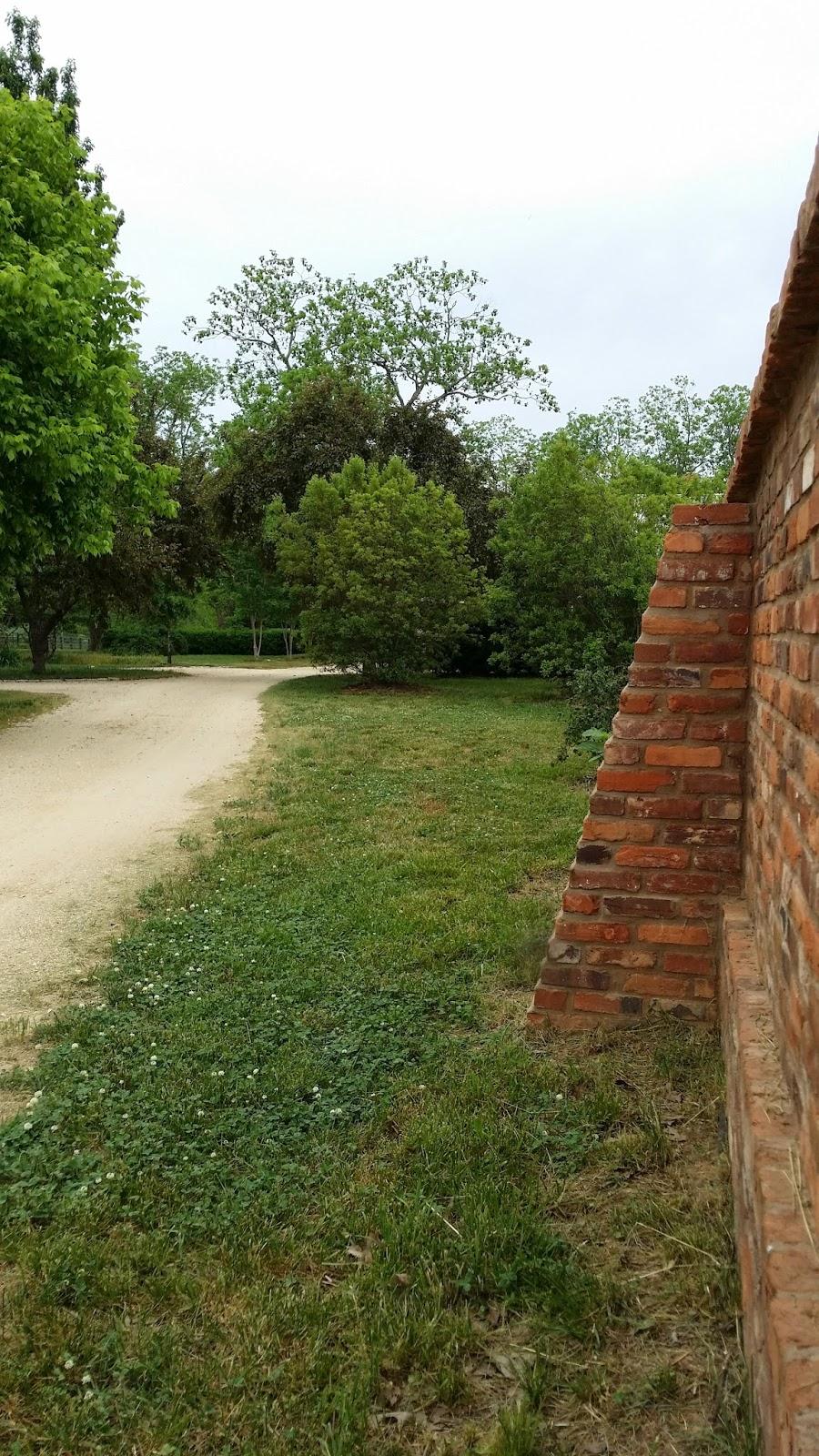 TARA DILLARD Gravel