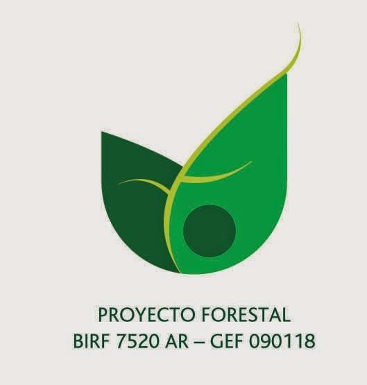 PROYECTO FORESTAL BIRF
