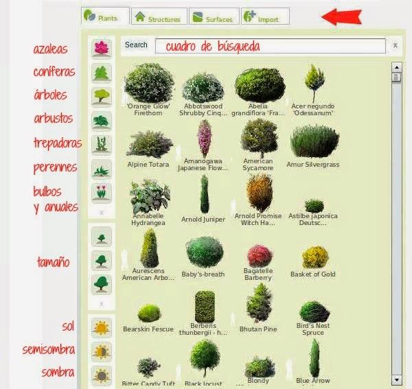Los nombres de las planta en ingl s imagui for Nombres de arboles en ingles