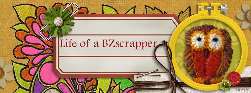 Life of a BZscrapper