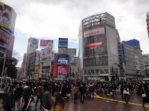 Class Project Trip Report Japan