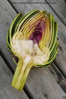 benefits_of_eating_artichokes_fruits-vegetables-benefits.blogspot.com(11)
