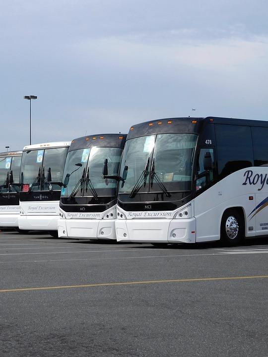 Buses del Mundo. Imagen 8