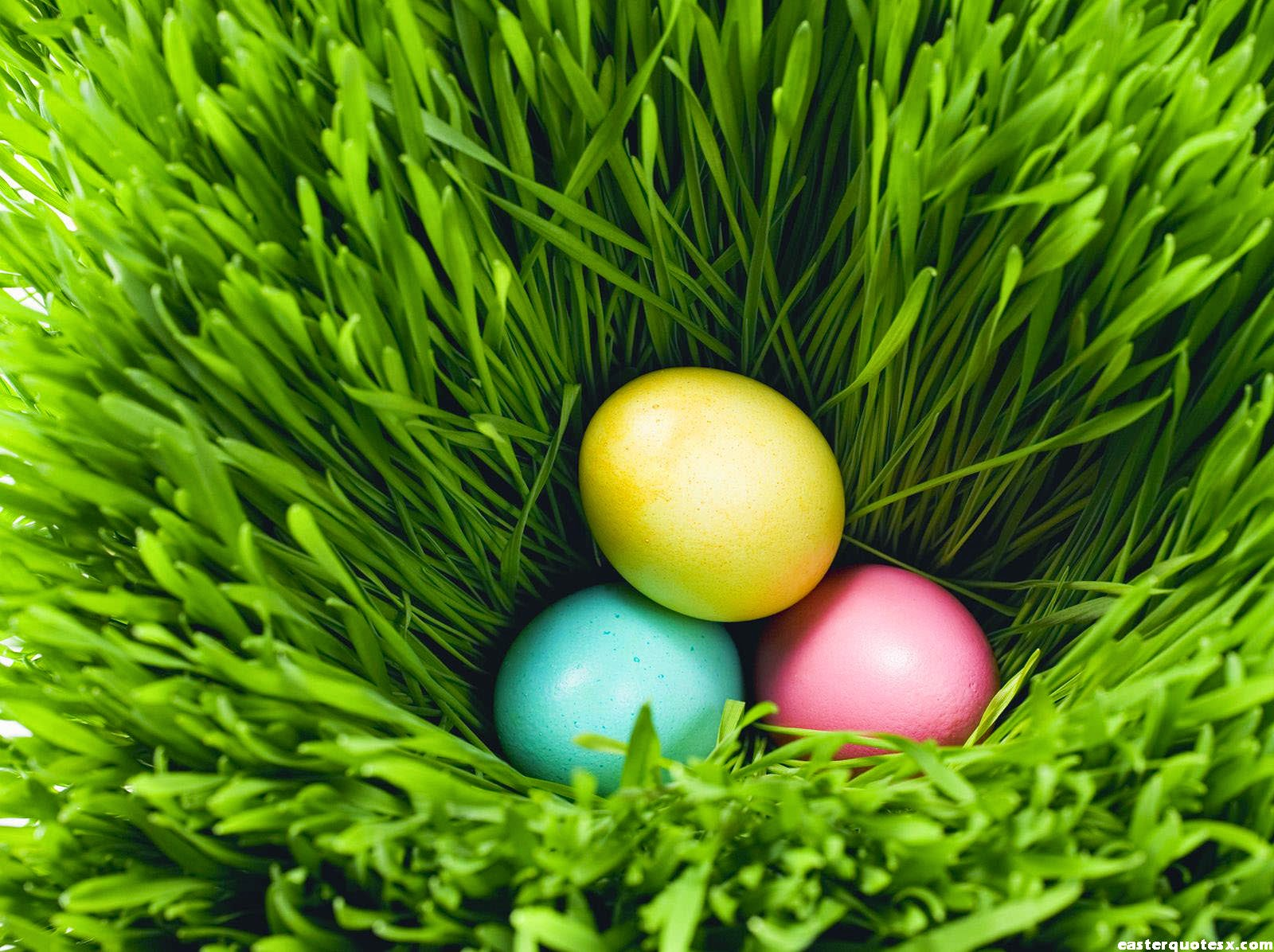 138 <b>Easter Egg HD</b> Wallpapers | Backgrounds - Wallpaper Abyss