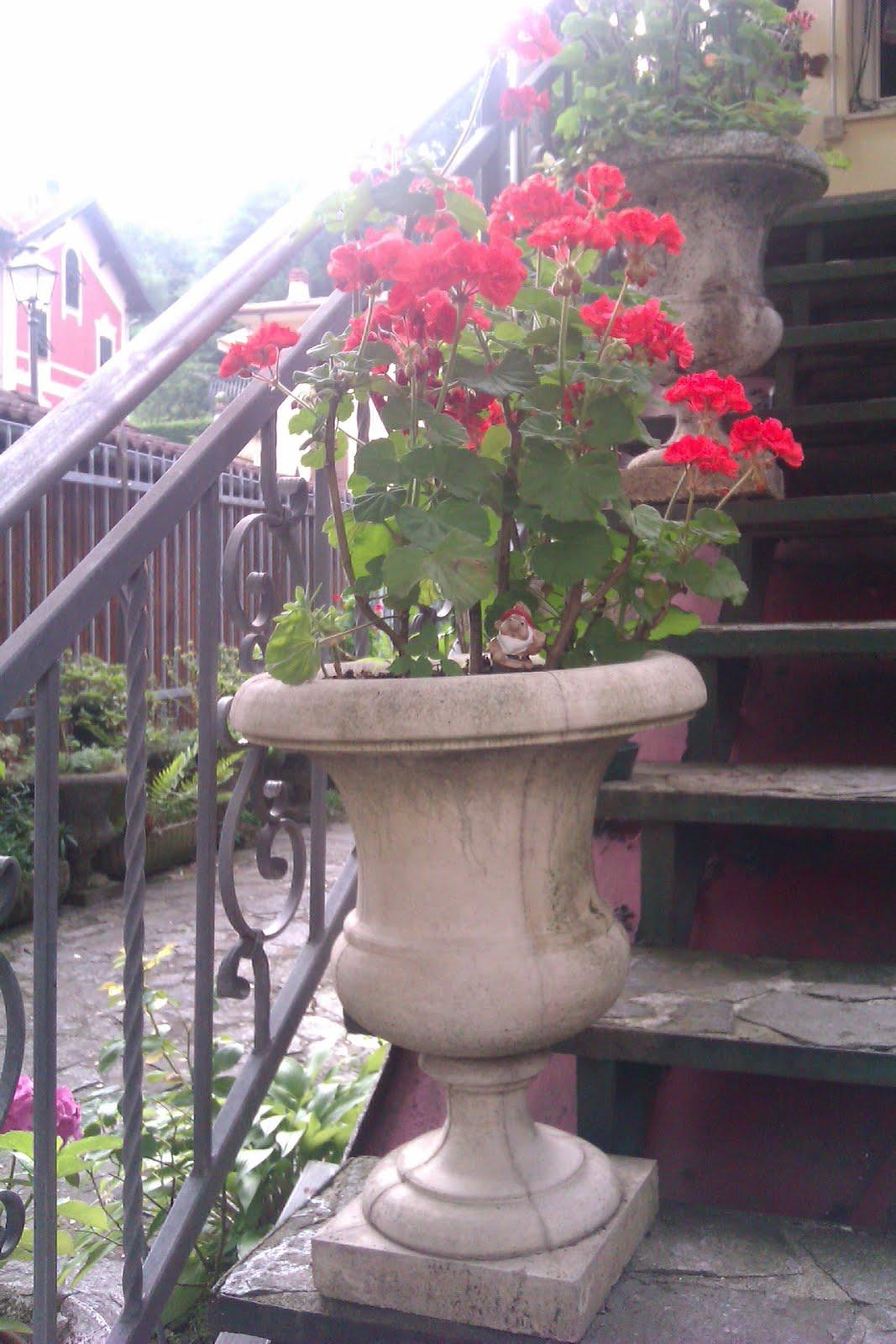 Truccioli di tempo vasi da giardino - Vasi da giardino ...