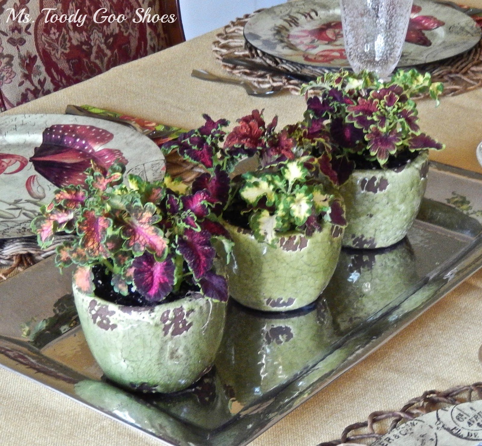 Cheap and Cheerful Flower Pot Centerpiece --- Ms. Toody Goo Shoes