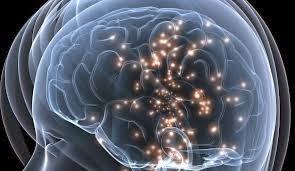 El Cerebro Inconsciente