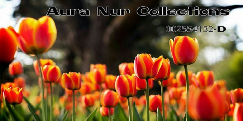 Aura Nur Collections